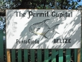 The Permit Capital